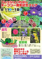 Iwahashi1_3