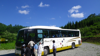 201006243