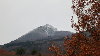 201211173